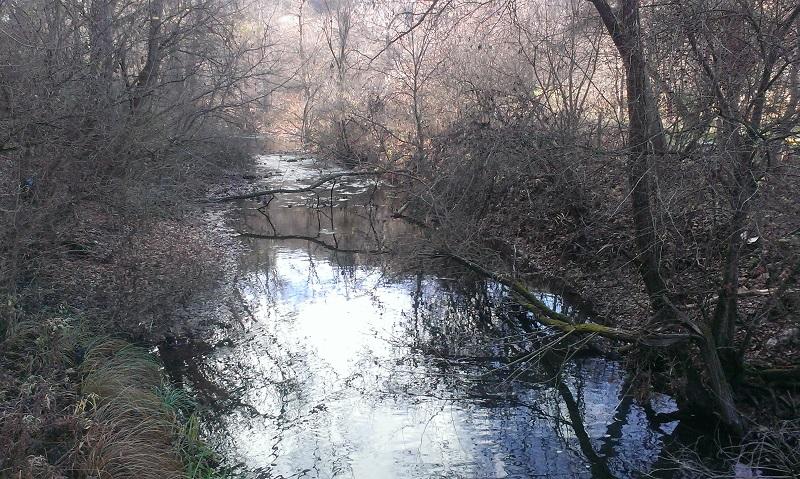 Около Манастира - река Нишава