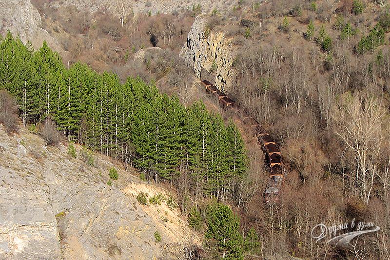Влак в дефилето на река Нишава