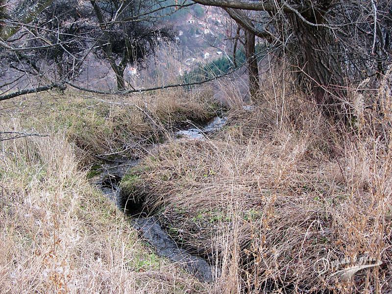 река Скакля, отгоре на платото