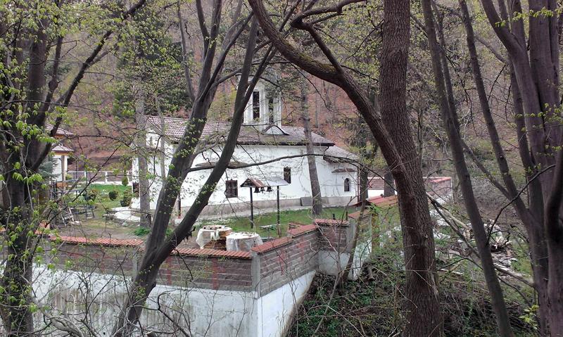 Дивотински манастир - общ изглед