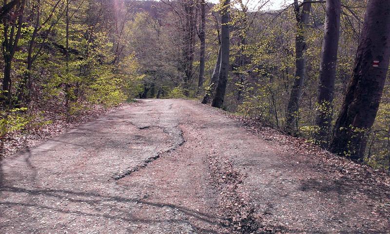 Пътят към Горнобанския манастир след паркинга