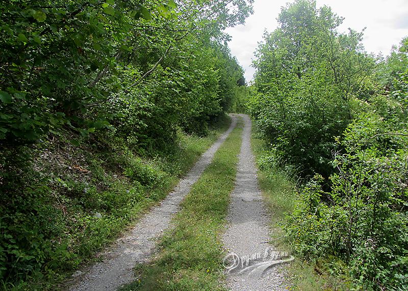 Пътеката към водопад Добравишка скакля
