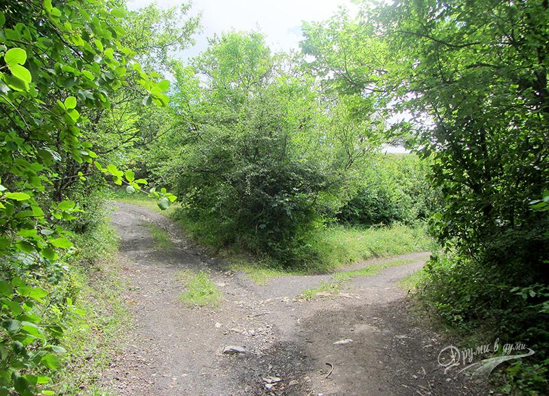 Разклонението на пътеката - поема се по левия път
