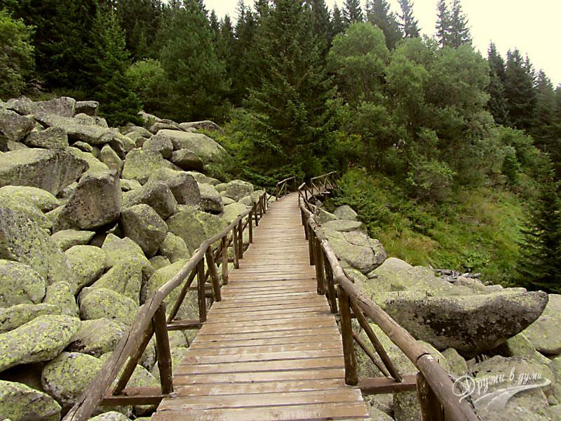 Интересни забележителности по пътеката Бистрица - Алеко