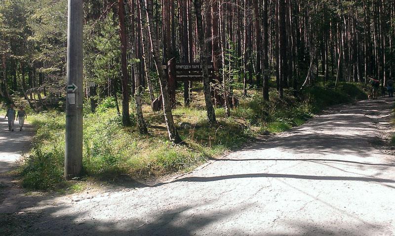 Преходът Бистрица - Алеко: начало на горската пътека