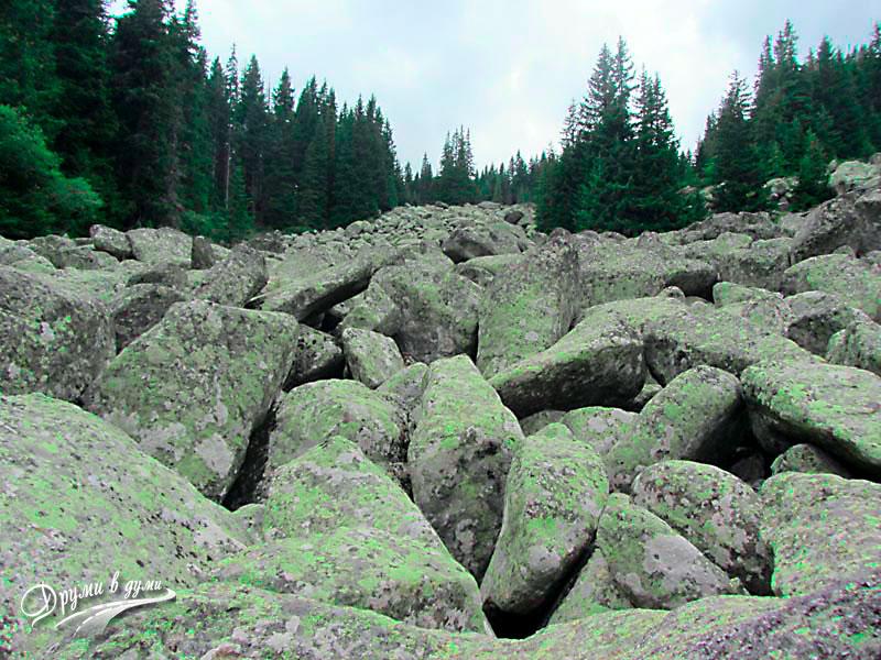 Преходът Бистрица - Алеко: Каменната река