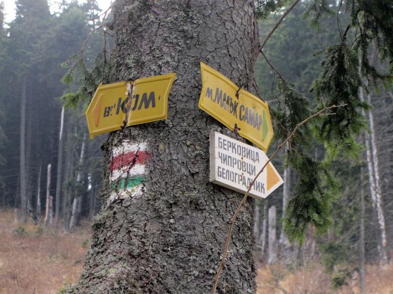 По пътеката за връх Ком