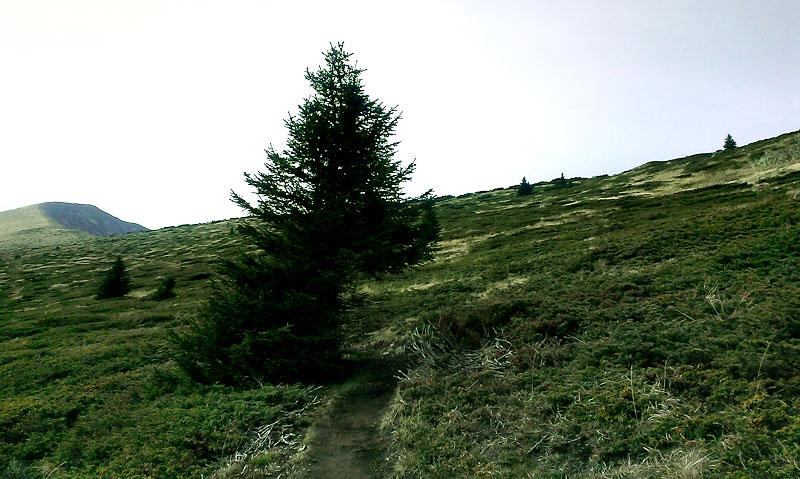 По пътеката за връх Ком - етап 3