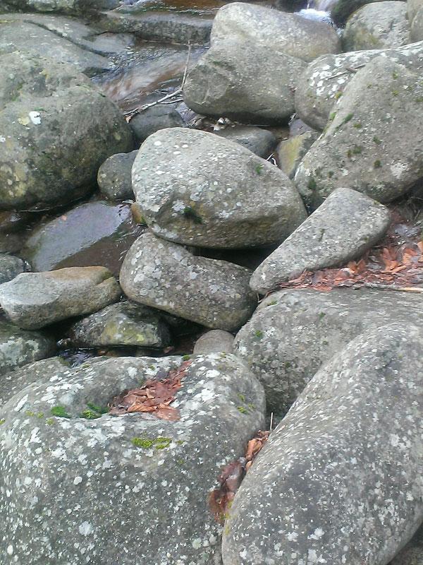Покрай река Санданска бистрица