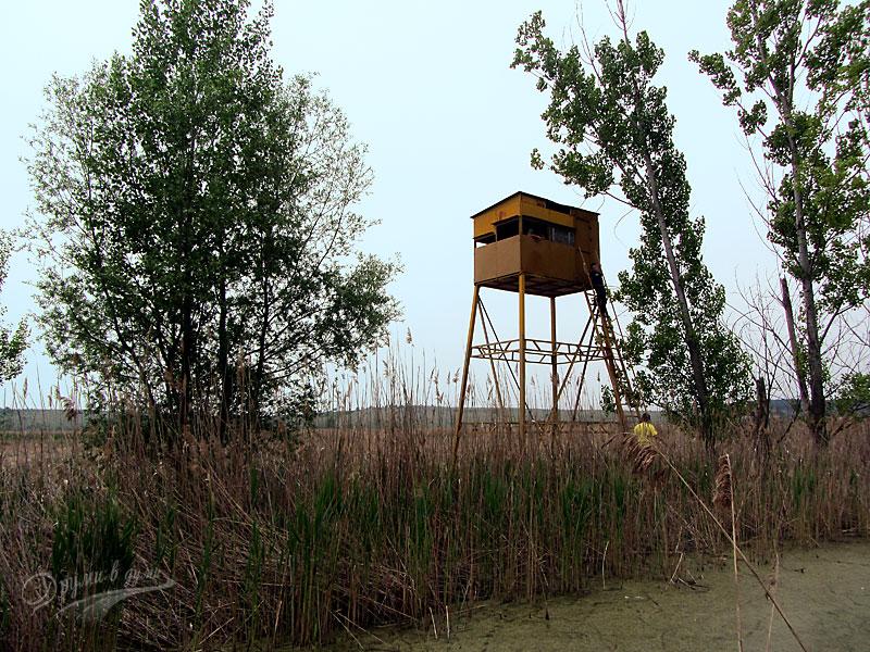 Кулата за наблюдение на Драгоманското блато