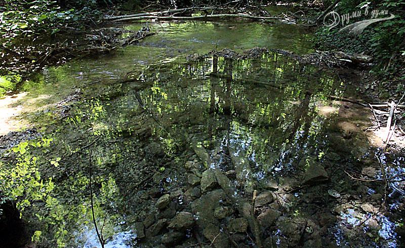 Кристалната вода на река Сливов дол