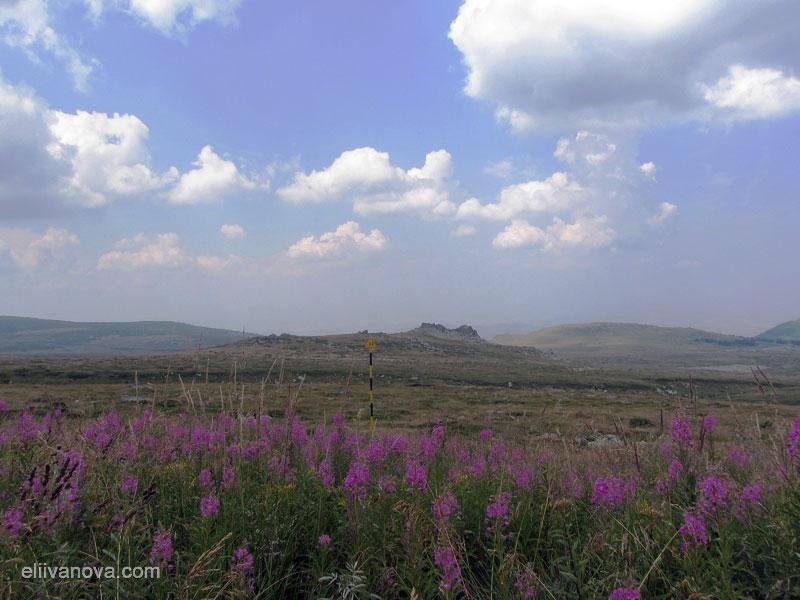 Към Черни връх: По пътеката