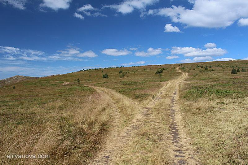 Разклонението - вляво е за Вършец, напред е маршрутът Ком-Емине