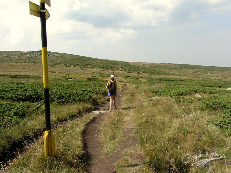 Витоша: на слизане от Черни връх към хижа Кумата