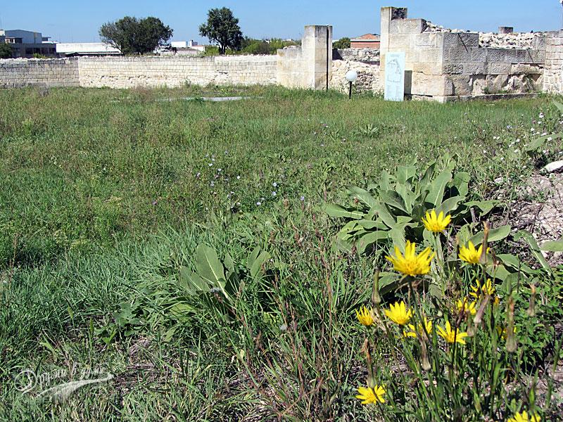 Римският град Абритус