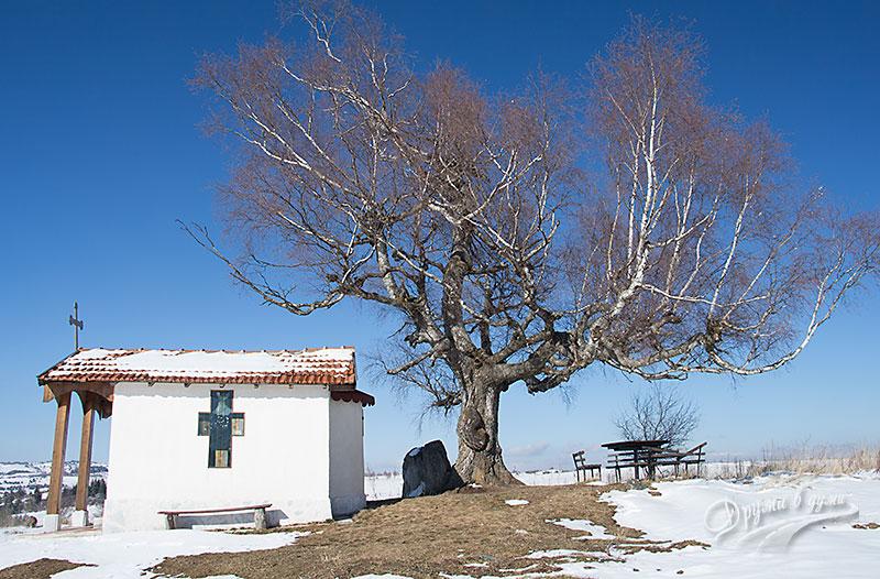 Параклисът св. Киприян в село Плана