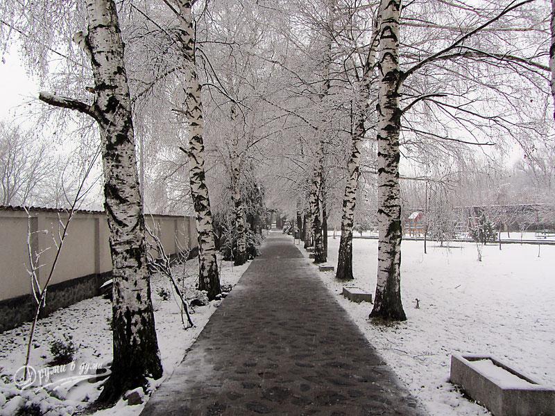 Към манастира: алеята след портата