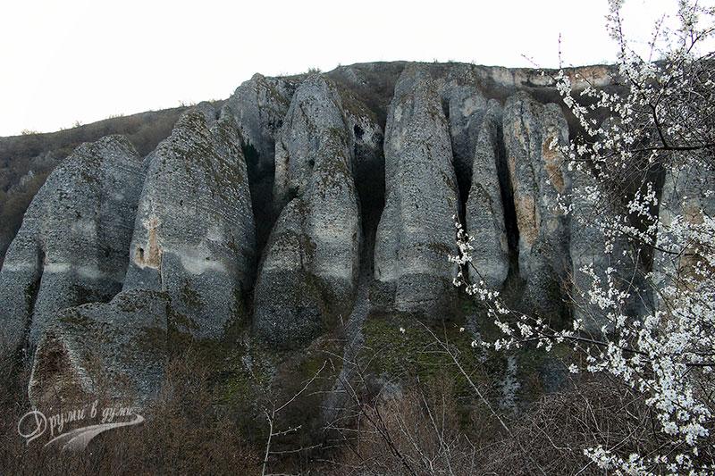 Скален феномен Купените край село Реселец