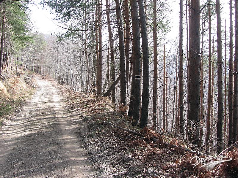 По пътеката от Кръстова гора до Караджов камък