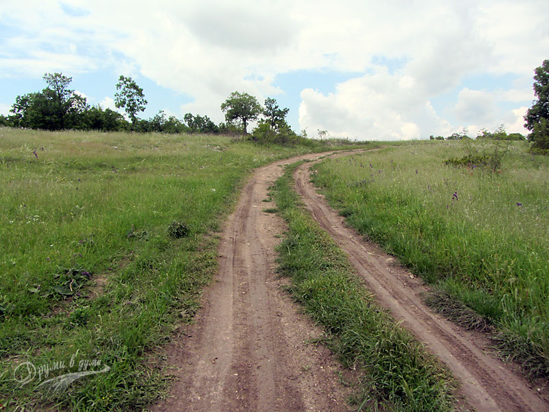 По пътеката