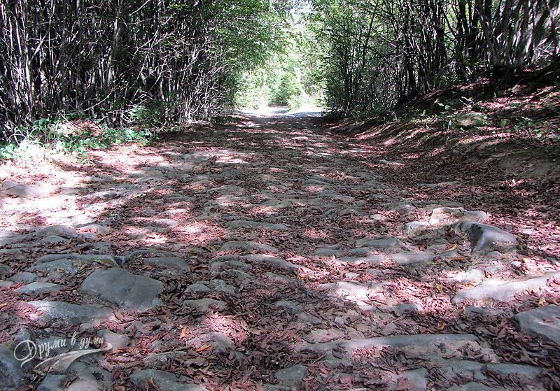По пътеката: калдъръм