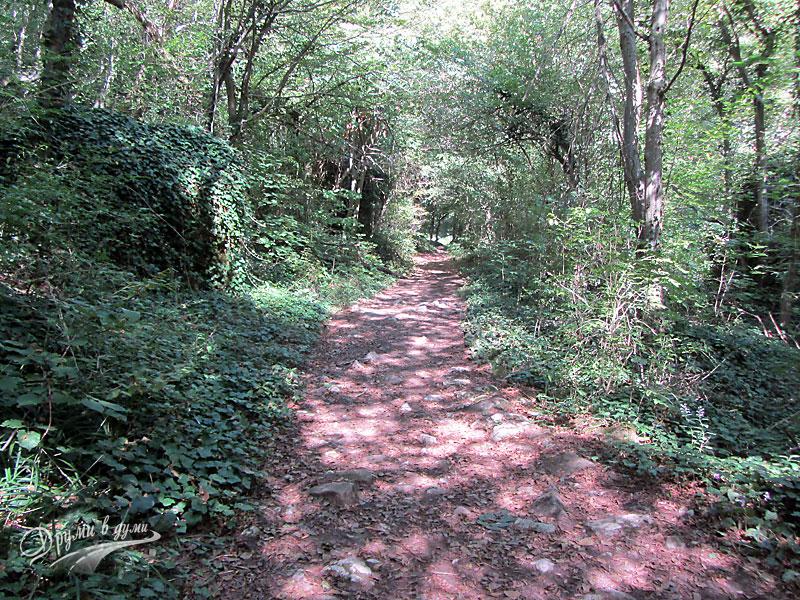 Пътеката към водопад Сини вир