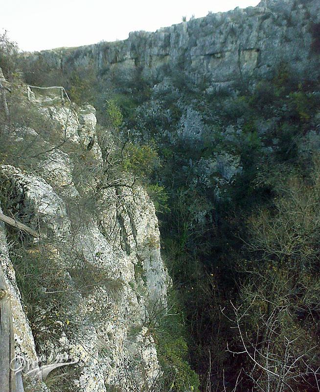 Високите скали на каньона