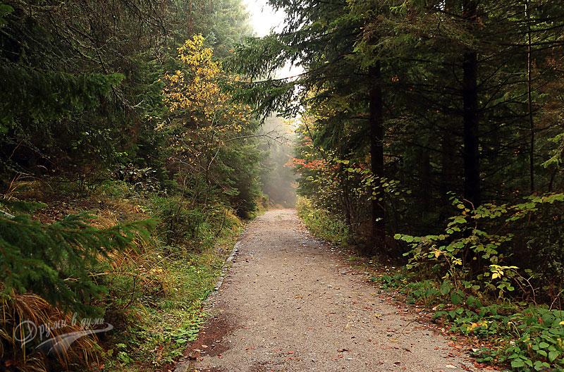 По пътеката: есенно
