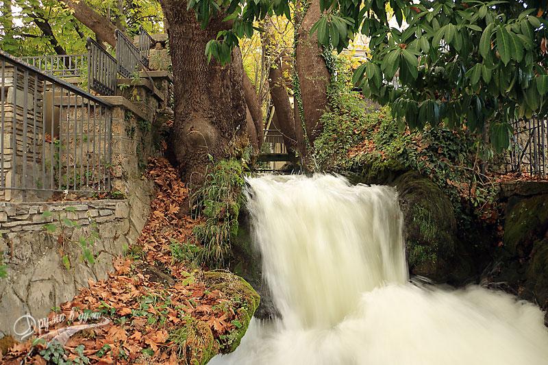 Река Вода в началото на парка