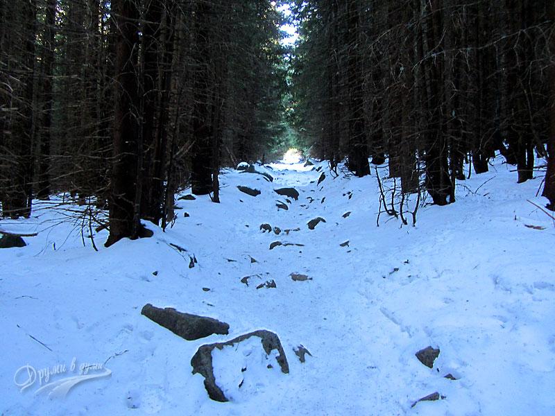 Горският тунел след хижа Тинтява
