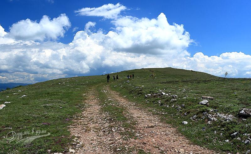 В Чепън планина: към връх Петровски кръст