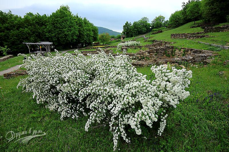 Крепостта Хоталич край Севлиево