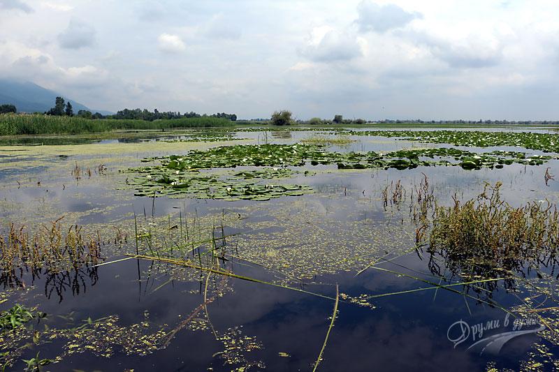 Гледка към езерото от кея на Мандраки