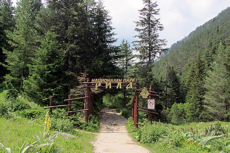 Към връх Мальовица: началото