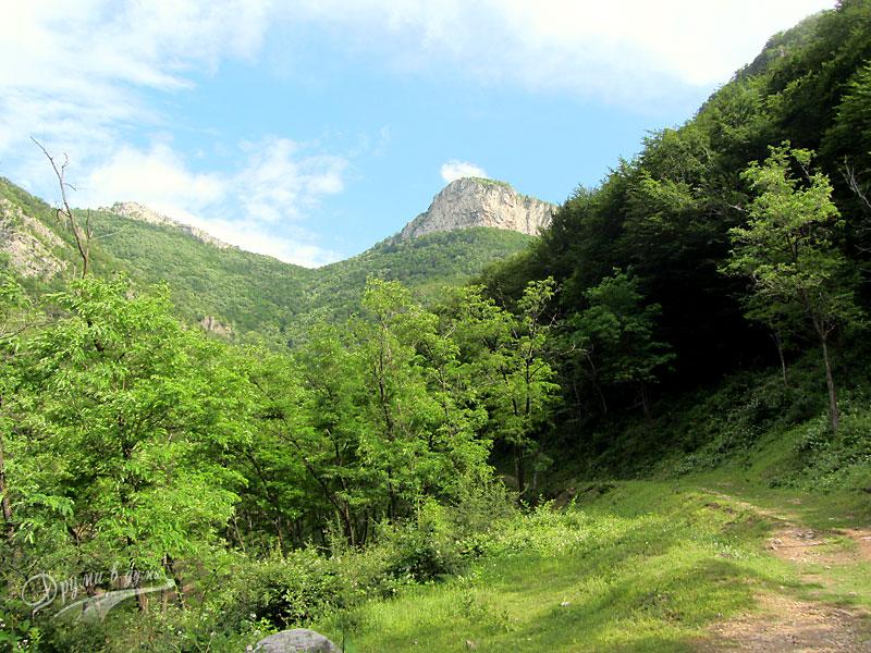 Екопътека Боров камък: в началните метри