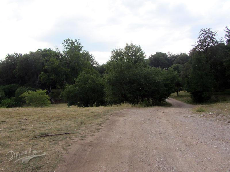 По пътеката, напред вляво е Слънчева поляна