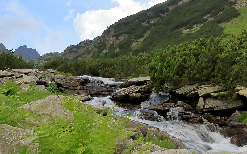 Към първата тераса в маршрута до връх Мальовица