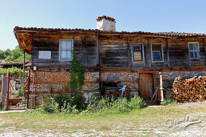 Село Бръшлян