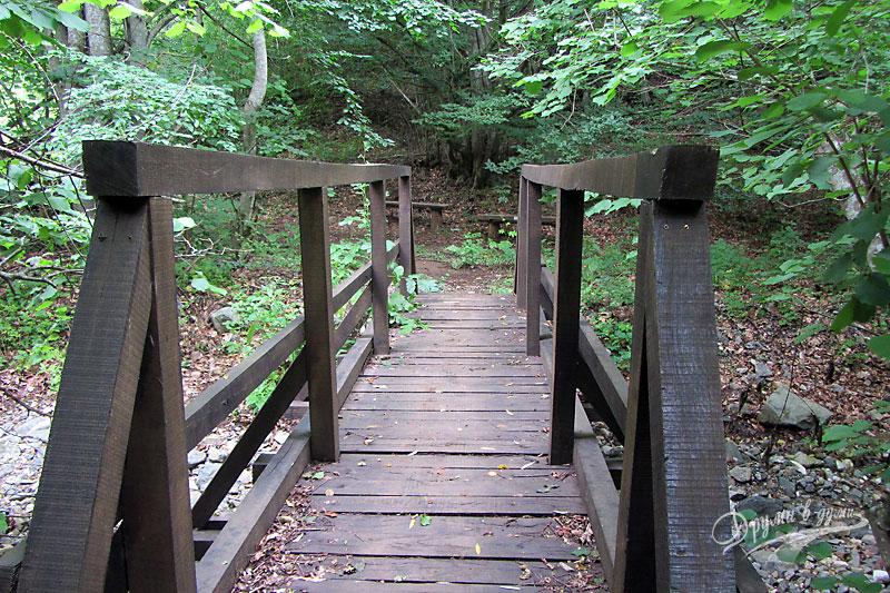 Местност Пропада: по дървеното мостче