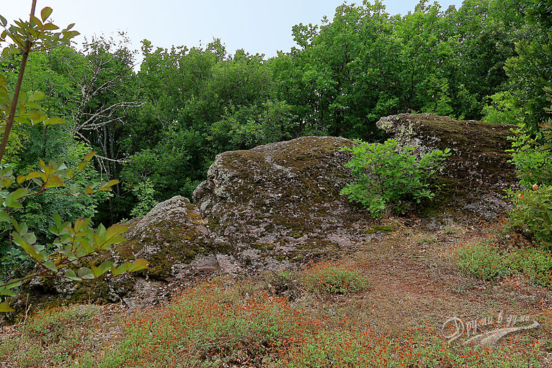 Първите камъни от светилището Камъка