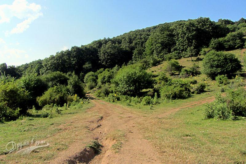 Мургашките шест кьошета: подсичащата пътека в ляво