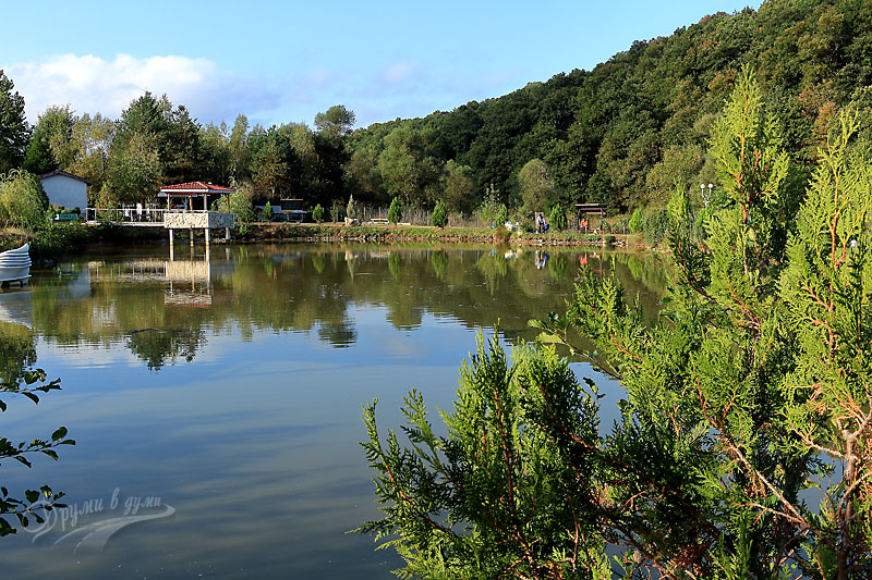 Вили Буково: езерото