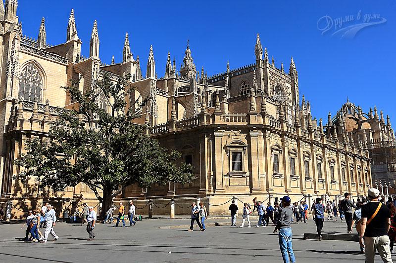 Севиля - катедралата