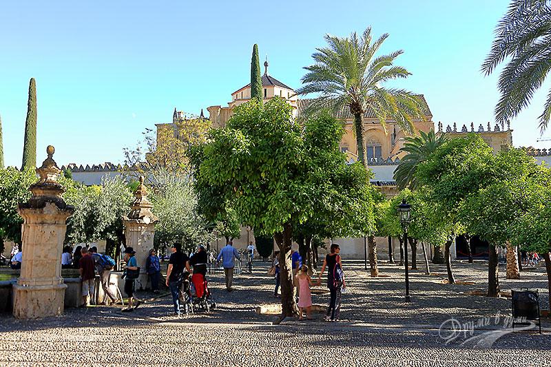 Джамията - Катедрала: градината