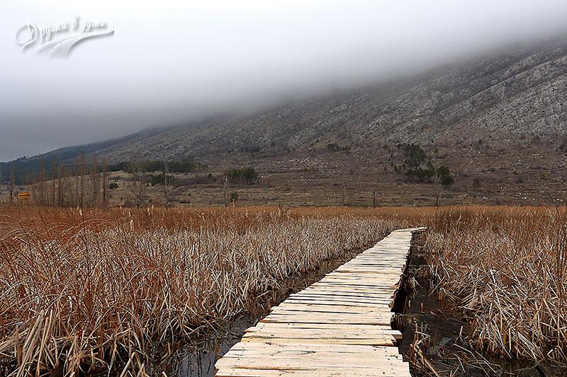 Драгоманското блато и Чепън планина зимно време
