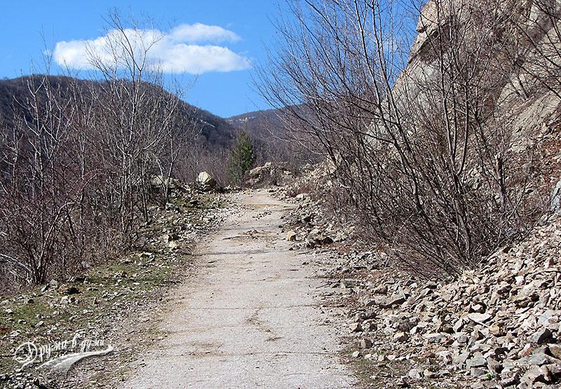 По шосето към Сувчарското пръскало