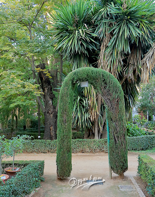 Ботаническата градина