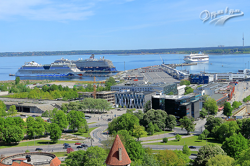 Views from the St. Olaf church's tower: The Baltic Sea
