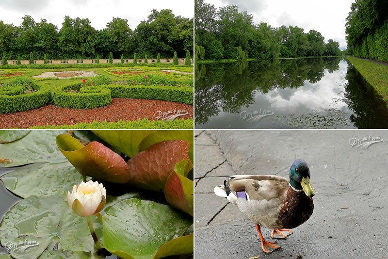 Wilanow palace: more pictures from the gardens