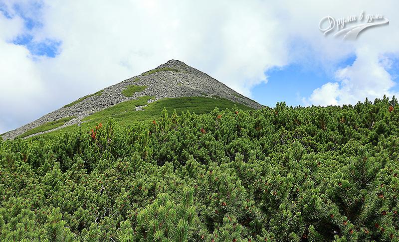 Конусовидният връх Шатър